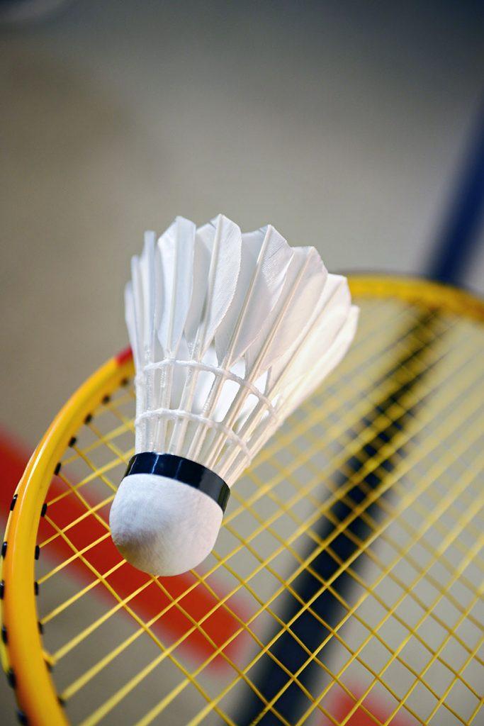 Artemis Badminton